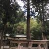 森瀬神社(岡山県新見市大佐布瀬2429)
