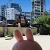 セブITパークのすぐ外のローカルエリアには私の知らない世界が広がっていた・・・