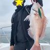 【釣果報告】文化の日釣行~釣りは文化です~
