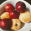 果実からみる植物のエレメント