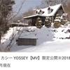 デリカシー【MV】