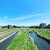 夏に向かう金沢。