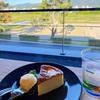 【鴨川で気ままに過ごす休日✨】京都鴨川日曜日のお散歩日記