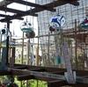 奈良の観光スポット  「おふさ観音」 風鈴祭り