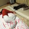 甲斐犬サンの『幸せのカタチ』〜(p゚∀゚q)キュキューン