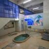 【別府市】浜脇温泉 東町温泉~開放的な浴室空間にポップな壁画!