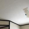 天井貼った・洗面室貼った・簡単更新