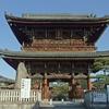 京都の梅 清涼寺(せいりょうじ)