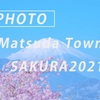 桜と富士山 2021:Sony α7c + SEL135F18GM、SEL70200GM