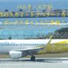 アメックス(AMEX)スカイトラベラーカードのボーナスマイルにバニラ・エアが参加!航空券購入でポイントが3倍または5倍貯まる
