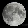 望月(月齢14.216)