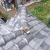 瓦屋さんでも屋根の上に上がるのは怖いんです。