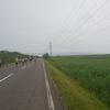 第46回釧路湿原マラソン 30km (2018年) ぎりぎり完走