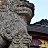 静岡県は写真日和