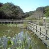 花島公園 〜花見川 その二〜