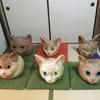 山口県のネコ寺「雲林寺」に行ったけど猫かぶりできんかった