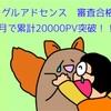 3か月で20000PV&アドセンス通りましたよ〜〜