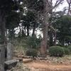 御嶽山(九重神社)  川口市安行原