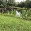中野区の哲学堂公園をお散策