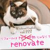 【週末英語#222】英語で家のリフォームは「reform」じゃなくて「renovate」