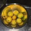 塩レモンとオイルサーディンのパスタ