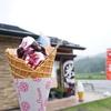 【白馬そだち】のソフトクリームは超絶品♪テラス席愛犬OK♡