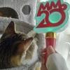 #329 アンジュルム新メンバー加入おめでとう!とモー娘。新曲待機【ハロプロ】