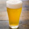 夏に強い「ビール」関連企業