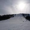 雪山遊び20日目/ハチ北でスキー⛷️