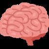 基礎からの神経科学(その3)BrainAwarenessWeek