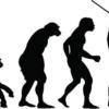 パソコンが使えないのは進化の証