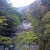 徳島県にある「祖谷のかずら橋」が超怖い!