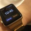 Apple Watchをワーママが使うとこうなる:休日