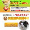 【完全自動】ぽちっで月収200万円確定!?