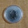 7枚目 ライオン・キング銀貨