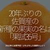 433食目「20年ぶりの佐賀産の新種の果実の名は『果試35号』」2022年に出荷予定!ぷちぷちした食感らしい!