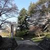 多摩川桜百景 -78. 都立小峰公園-