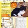 【エムPの昨日夢叶(ゆめかな)】第736回 『2月22日は猫の日だった。今からでも間に合う猫の日イベントに出会った夢叶なのだ!?』 [2月22日]