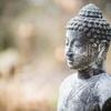 潜在意識に到達するまで、顕在意識で許し続ける