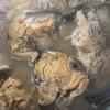 鯖を骨ごと食べられるように圧力鍋で煮てみました。(自家製サバ缶)