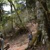 立夏の綱附森遊山 稜線歩き