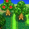 どうぶつの森における果物について
