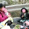三重~奈良~和歌山に行ってきました。