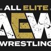 2019年の新日本プロレス ~THE Elite と AEW~