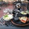 『ステーキのあさくま』でシュナとディナーだで〜