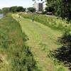元荒川河川敷で草刈開始