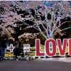 【ネスタリゾート神戸】年中イルミネーションが見れる!?子連れ、家族、カップルにおすすめ