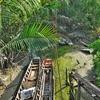「バーンカチャオ」バンコクの肺とも呼ばれる自然保護区~癒しの亜熱帯ジャングル湿地帯へ。。。