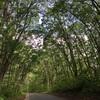 【長野県】『野尻湖』に電車と徒歩で行ってきた