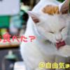 【期間限定】亀田の柿の種「焦がしラー油風味」を食べた感想